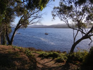 boat on the huon (1)