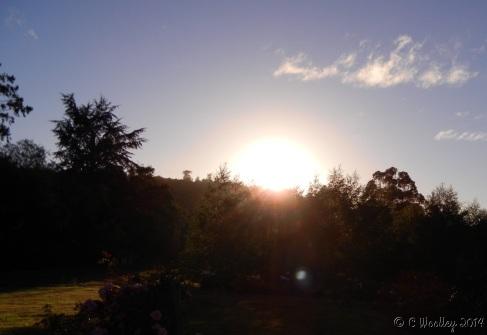 last morning of summer