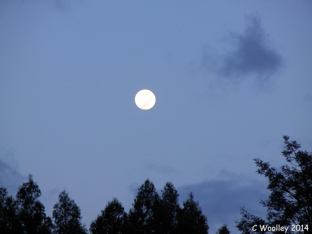 Moon this morning at 7.10am