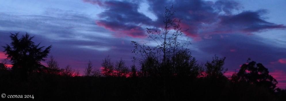 Morning Sky in May
