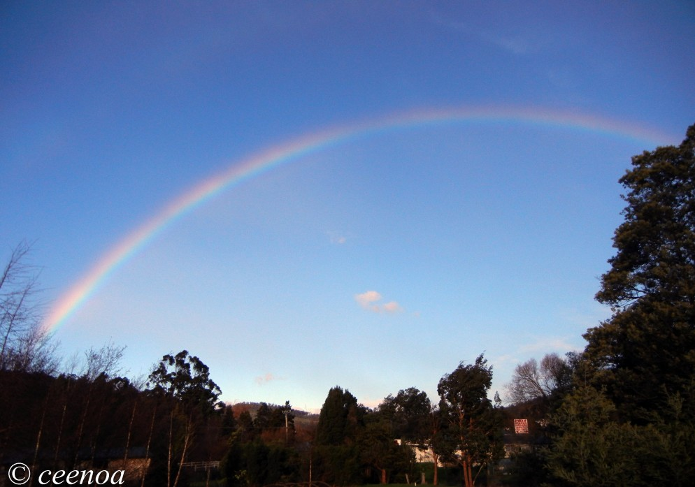 Ranibow 6 Aug 2014 (2)