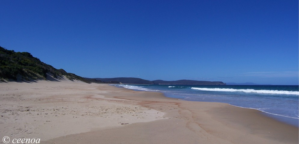 neck beach panorama