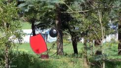 Robin Sculpture