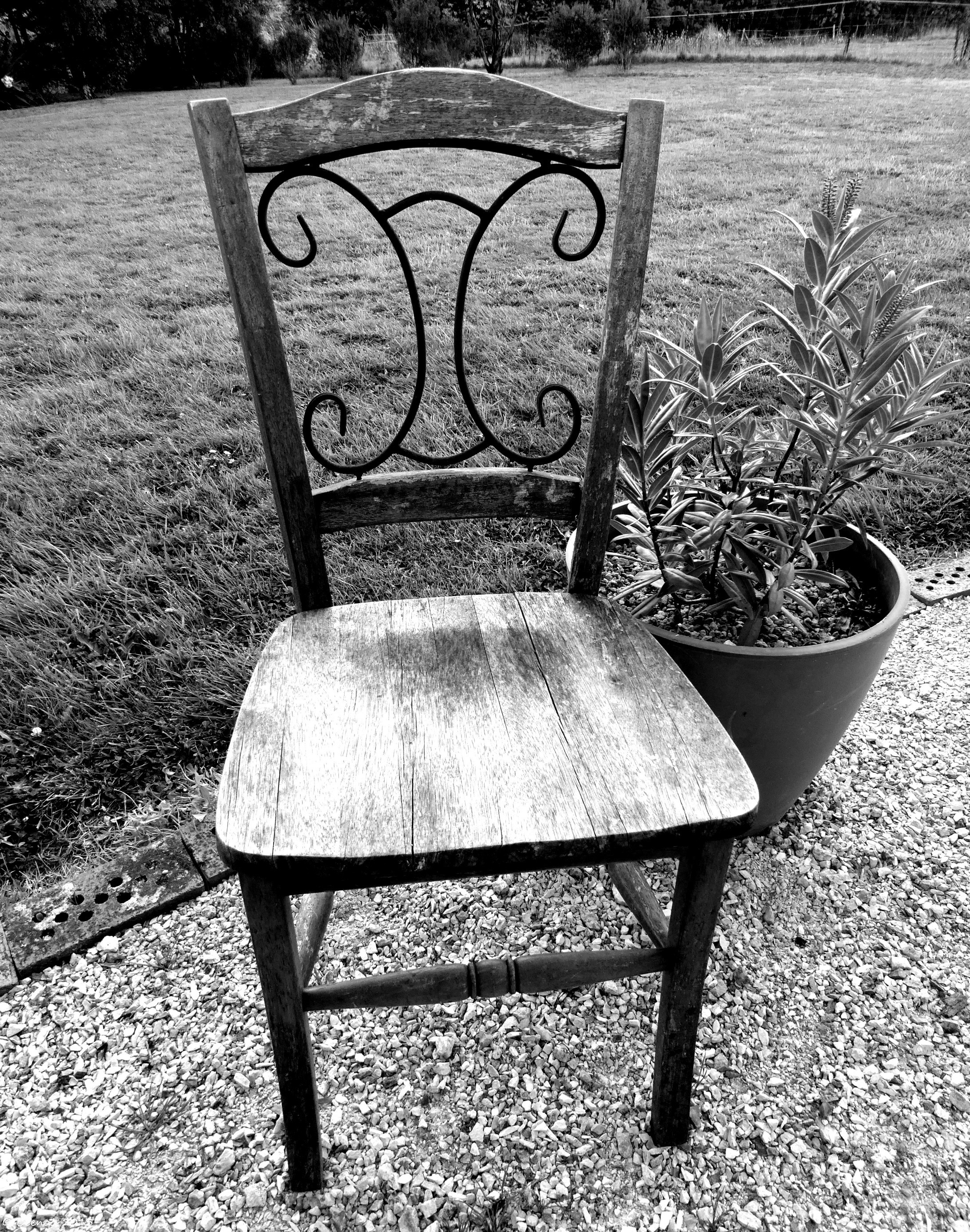 Black and white chair photography - Chair Lavendar