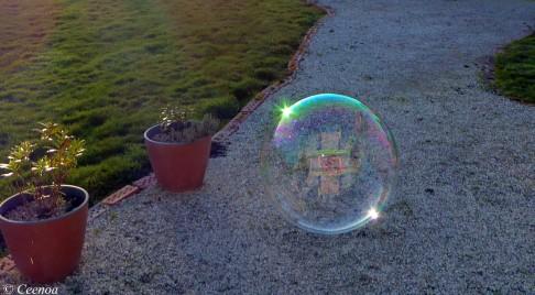 evening bubbles (2)