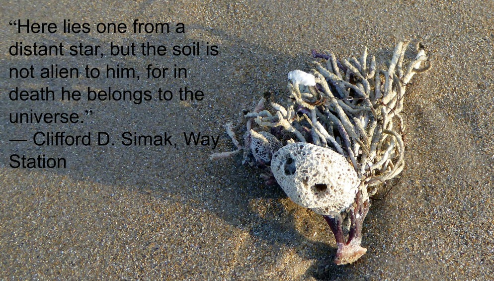 Clifford Simak Quote