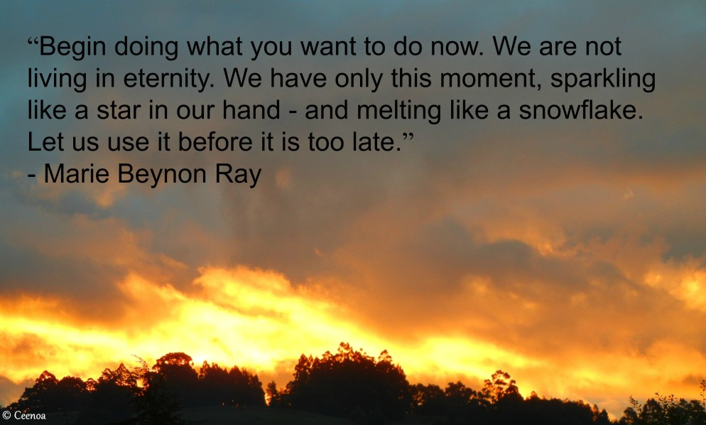 Marie Beyon Ray Quote