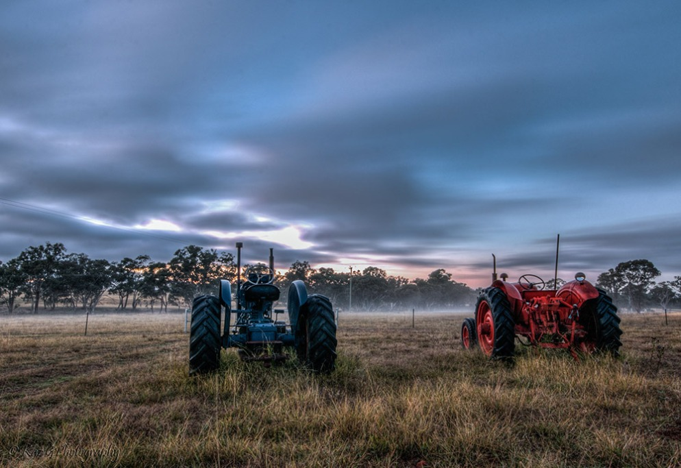 tractors-in-the-mist-2