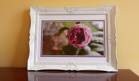 blooming-framed-sample-2