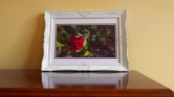 new-bud-framed-sample-2
