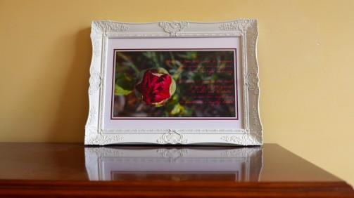 new-bud-framed-sample-2
