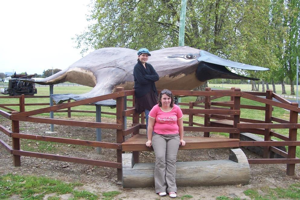 Big Platypus