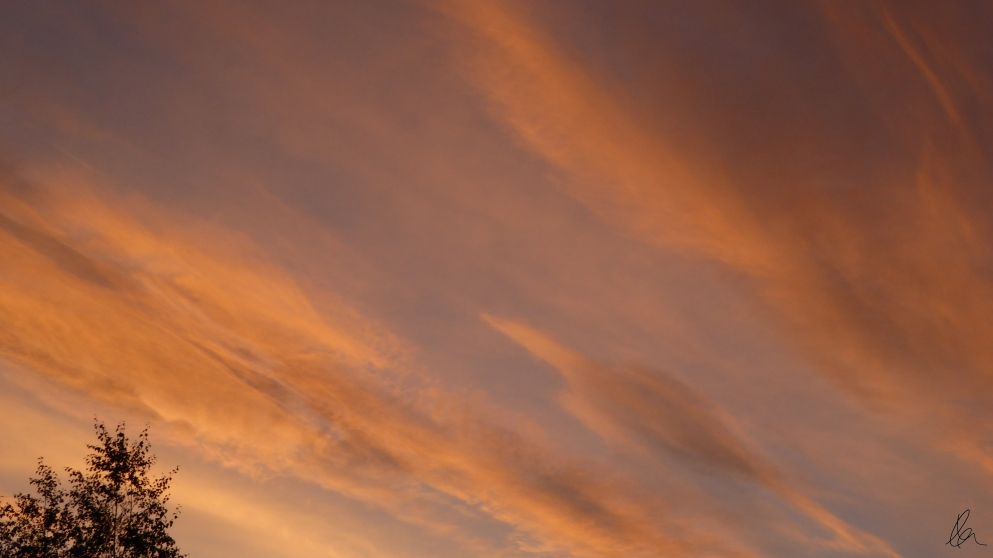 march-evening-sky-9