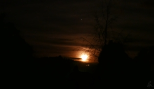 June Moon (1)