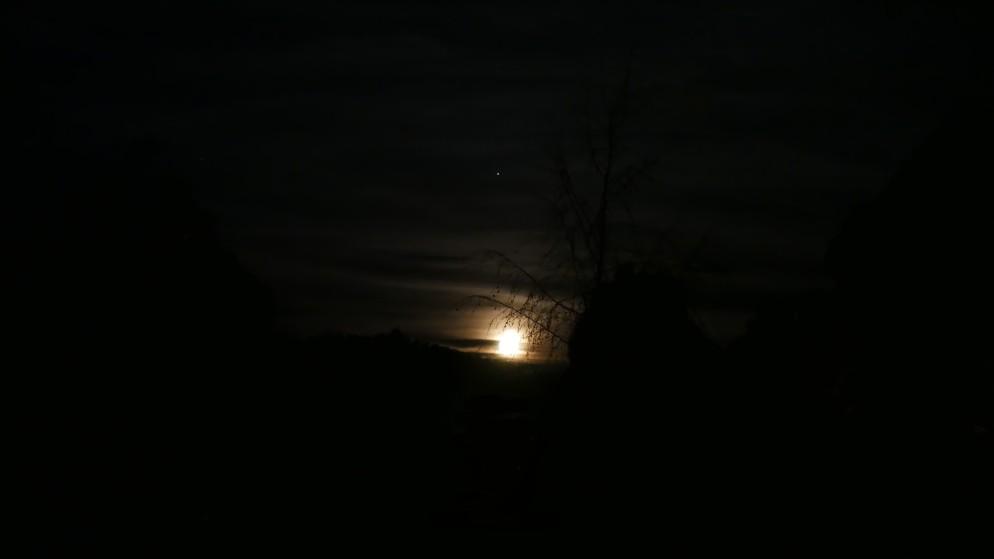 June Moon (2)