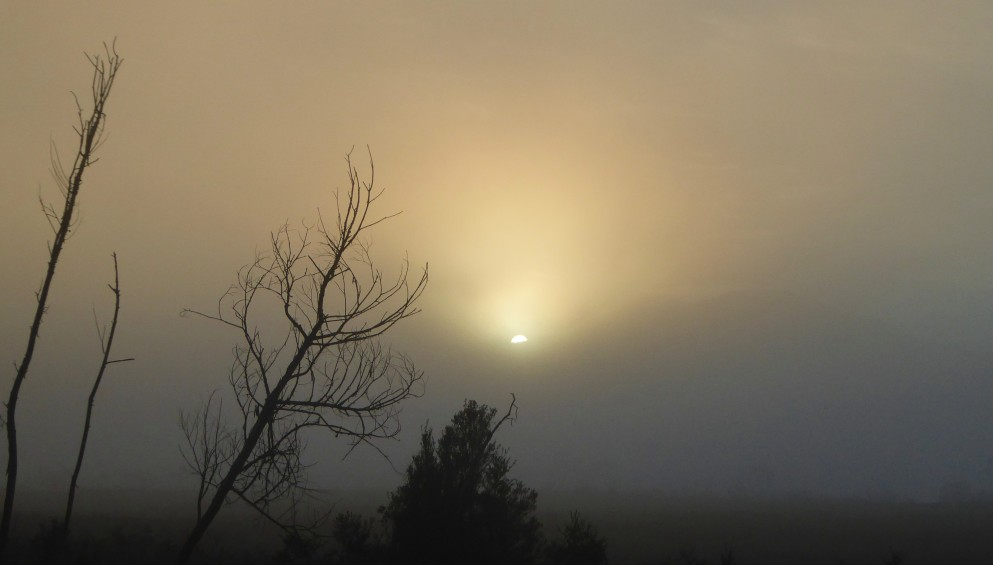 Sun Cresting through fog (2)