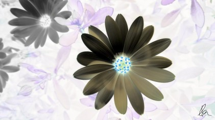 Daisy inverted