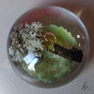 Lichen & Leaf Dome (1)