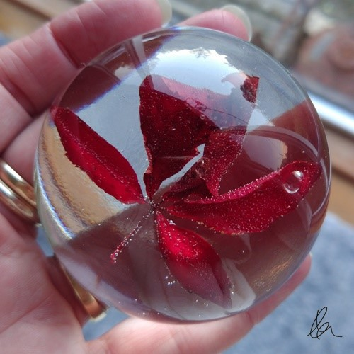 Red Leaf Dome (2)