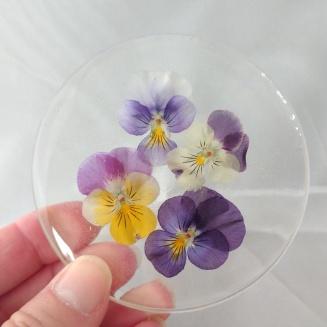 Viola Coaster (1)