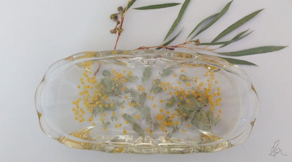 Wattle in Glass
