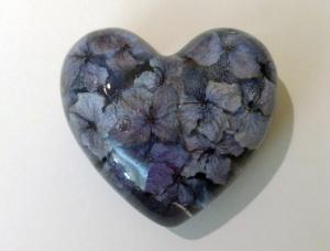 Hydrangeo Heart (2)