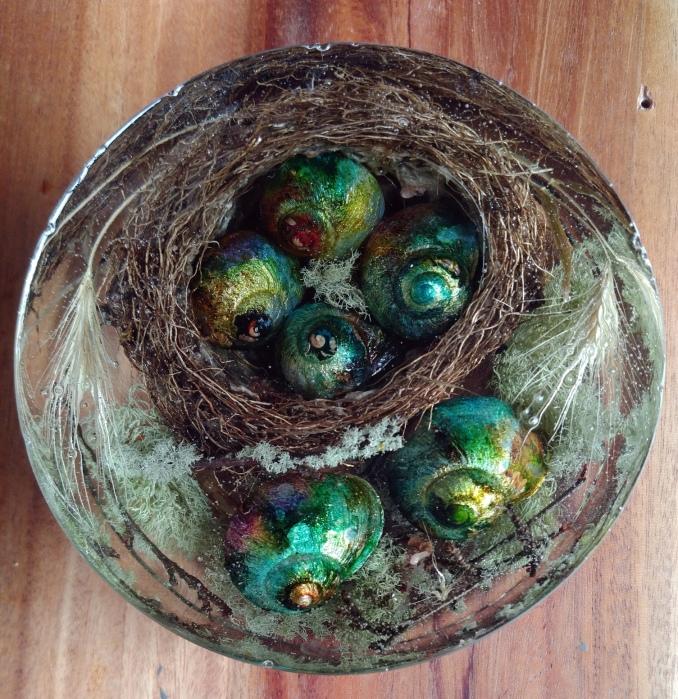 Snail Nest